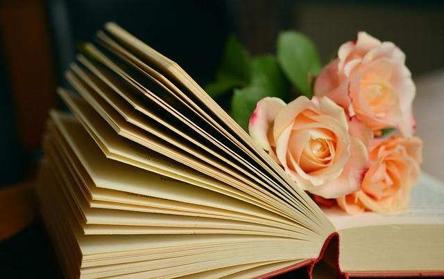 růže na knize
